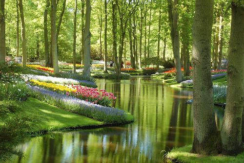 Jardines Keukenhof – Holanda