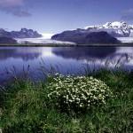 Parque Nacional Skaftafell, Islandia